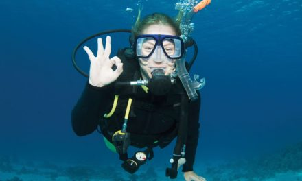 Destination Excitement, Adventure or Tranquility? Try Destination Scuba!