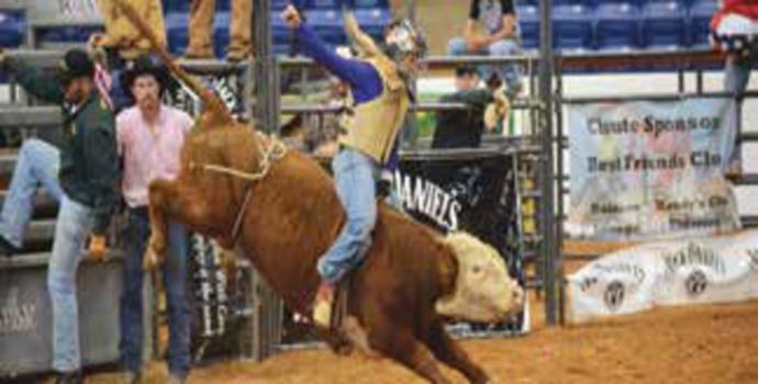 rodeo690x350
