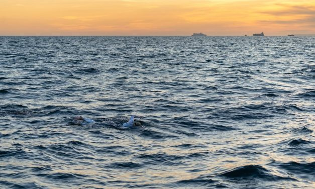Sarah Thomas Overcomes Cancer and Becomes First Person to Swim a Non-Stop Quadruple English Channel Crossing