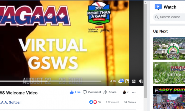 2020 Virtual Gay Softball World Series Event Recap